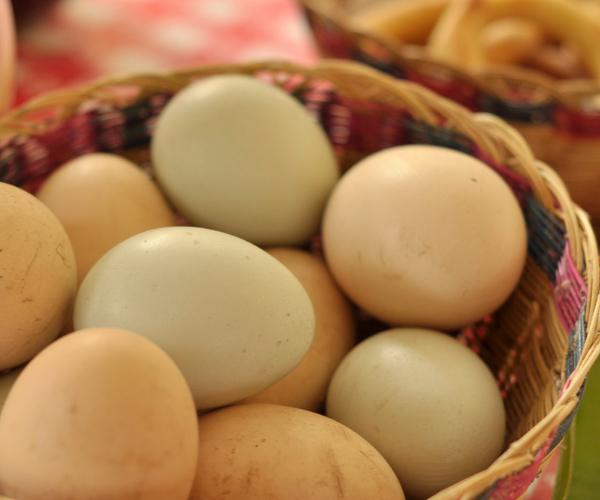 Huevos campesinos en Choachí