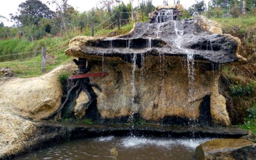 Cascada Ecológica